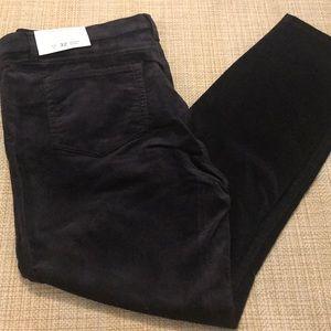 Loft Modern Skinny Pants 👖 Size 14 NWT